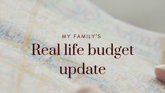 How my budget is working (1)