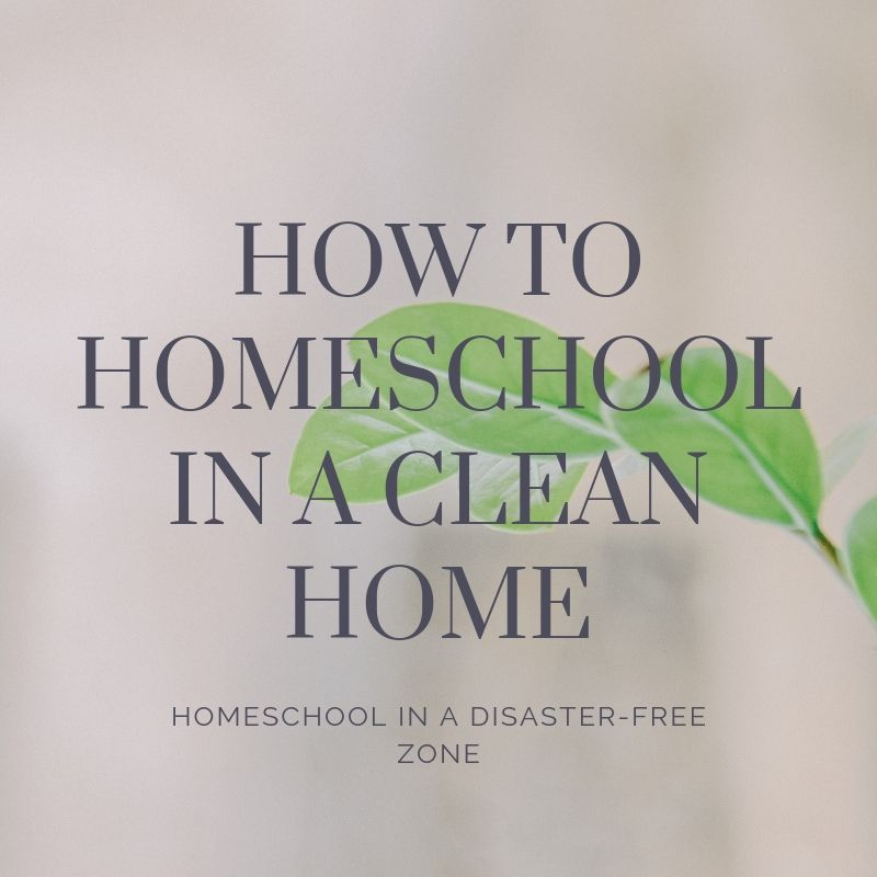 How to homeschool in a clean home (2)